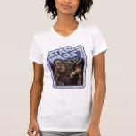 Chewie y Han Camiseta