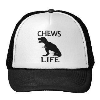 Chews Life Trucker Hat