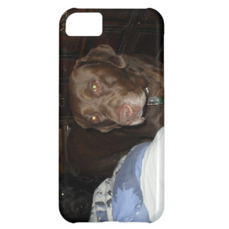 Chewy Chocolate Chip our chocolate lab Case For iPhone 5C