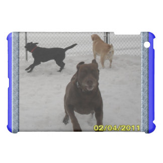 Chewy Lily Shadow running in the snow 2-4-11 iPad Mini Covers