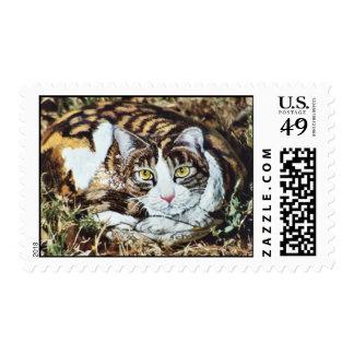 """""""Cheyenne"""" cat rock stamp"""