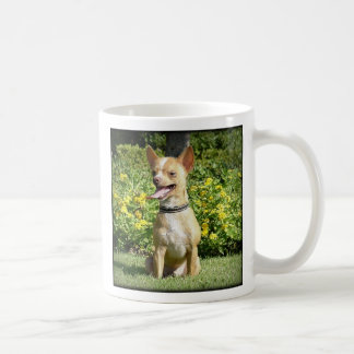 Chi Chi - Happiness is the love of an adopted Chih Classic White Coffee Mug