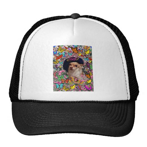 Chi Chi in Butterflies  - Chihuahua Puppy in Hat Trucker Hat