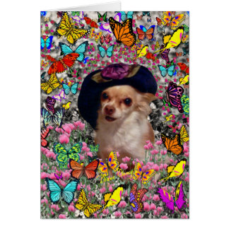 Chi Chi in Butterflies  - Chihuahua Puppy in Hat Card