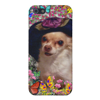 Chi Chi in Butterflies - Chihuahua Puppy in Hat Case For iPhone SE/5/5s