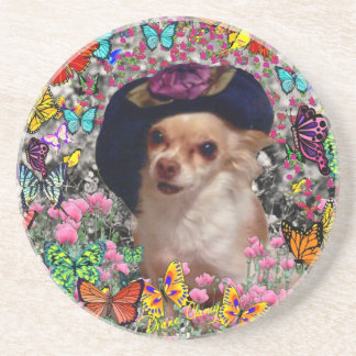 Chi Chi in Butterflies  - Chihuahua Puppy in Hat Coaster