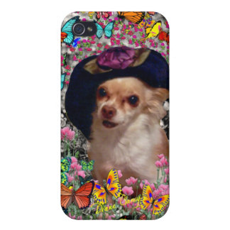Chi Chi in Butterflies - Chihuahua Puppy in Hat Cover For iPhone 4