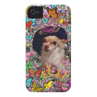 Chi Chi in Butterflies  - Chihuahua Puppy in Hat iPhone 4 Cover