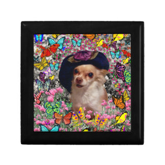 Chi Chi in Butterflies  - Chihuahua Puppy in Hat Jewelry Box