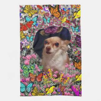 Chi Chi in Butterflies  - Chihuahua Puppy in Hat Kitchen Towel
