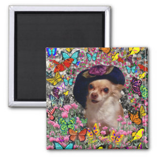 Chi Chi in Butterflies  - Chihuahua Puppy in Hat Magnet