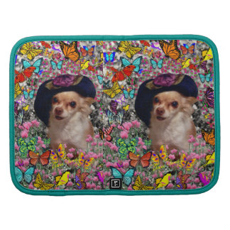 Chi Chi in Butterflies - Chihuahua Puppy in Hat Planners