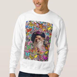 Chi Chi in Butterflies  - Chihuahua Puppy in Hat Sweatshirt