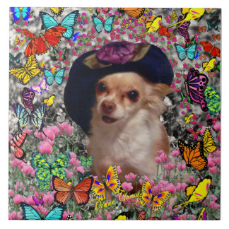 Chi Chi in Butterflies  - Chihuahua Puppy in Hat Tile