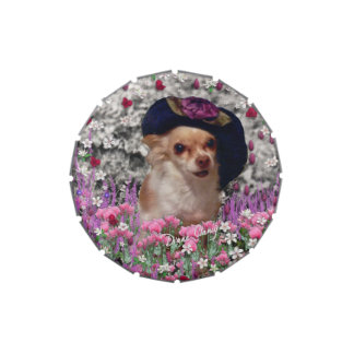 Chi Chi in Flowers, Chihuahua Puppy Dog, Cute Hat Candy Tin