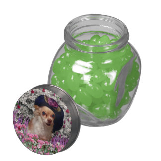 Chi Chi in Flowers, Chihuahua Puppy Dog, Cute Hat Jelly Belly Candy Jar