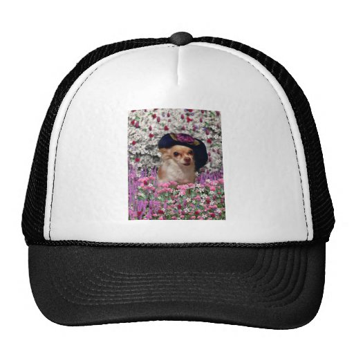 Chi Chi in Flowers  - Chihuahua Puppy in Cute Hat