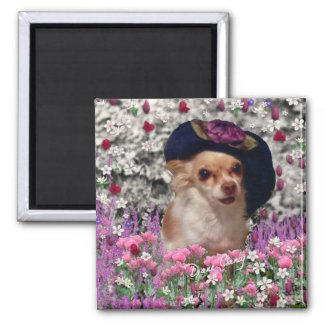 Chi Chi in Flowers Magnet - Chihuahua magnet