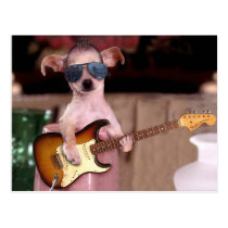 Chi Chi the Guitar Player Postcard
