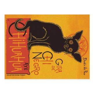 Chi Negro apparrel Postcard