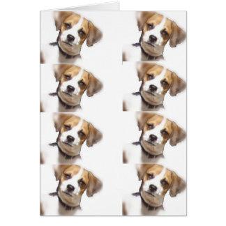 Chi -Weenie Items Card