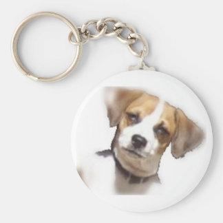 Chi -Weenie Items Keychains