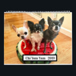 """Chi Yum Yum 2019 Calendar<br><div class=""""desc"""">Now you can have 12 months of daily smiles looking at these adorable chihuahuas.  They are YumYum,  Lollipop,  Gumdrop & Pixie of Chi Yum Yum</div>"""