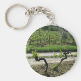 Chianti Vineyard in Tuscany Wine Region Italy Keychain