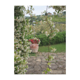 chianti vineyards, italy gallery wrap canvas