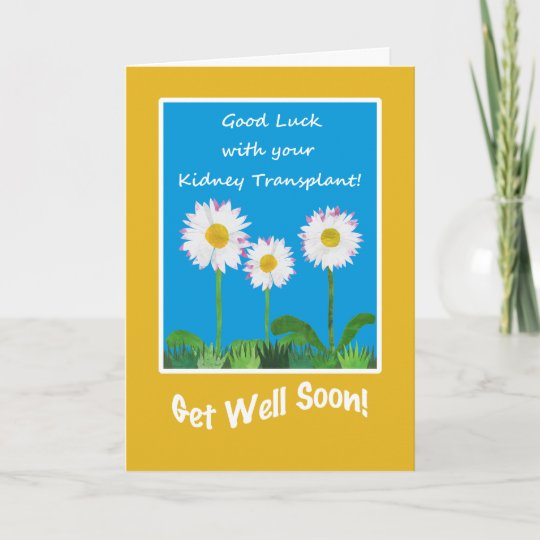 Chic get well card kidney transplant daisies card zazzle chic get well card kidney transplant daisies card m4hsunfo