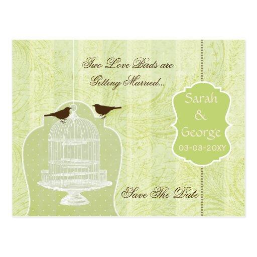 Chic green bird cage, love birds save the dates postcard