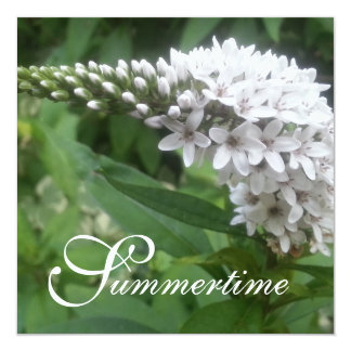 """CHIC INVITATION_""""Summertime"""" WHITE FLORAL Card"""