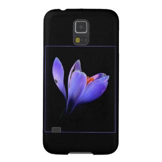 Chic lilac crocus flower black, blue purple gifts samsung galaxy nexus cases
