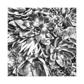 Chic Modern Black & White Succulent photo pattern Canvas Print