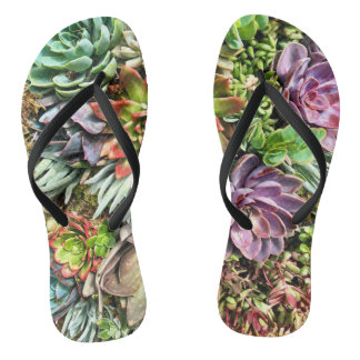 Chic Modern Colorful Succulent photo pattern Flip Flops