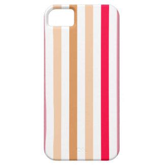 Chic Multicolored Stripes iPhone SE/5/5s Case