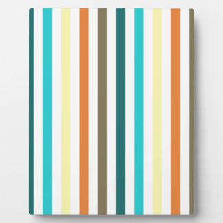 Chic Multicolored Stripes Display Plaques
