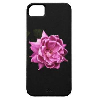 Chic Pink Rose Photo iPhone 5 Cover