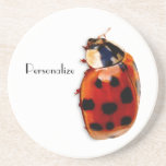 Chic Spotted Ladybug With Name Drink Coasters