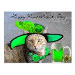CHIC ST.PATRICK'S DAY CAT,GREEN ROSES,IRISH BEER POSTCARD