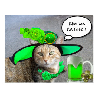CHIC ST.PATRICK'S DAY CAT,GREEN ROSES,IRISH BEER POSTCARD
