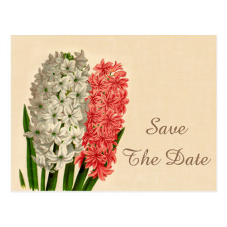 Chic Vintage Hyacinths 15th Birthday Save The Date Postcard