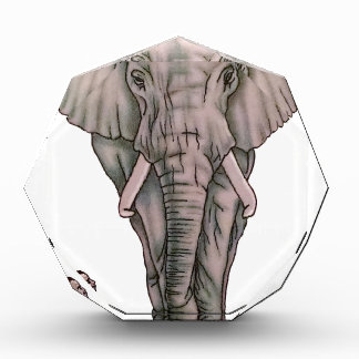 Chica de la bailarina con el elefante