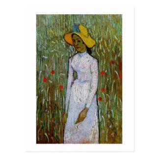 Chica joven, fondo del trigo, Vincent van Gogh Postales