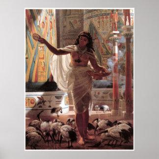 Chica joven que alimenta los Ibises sagrados en Póster