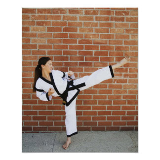Chica que hace los artes marciales 2 posters