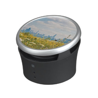 Chicago as seen from Montrose Harbor's bird Bluetooth Speaker
