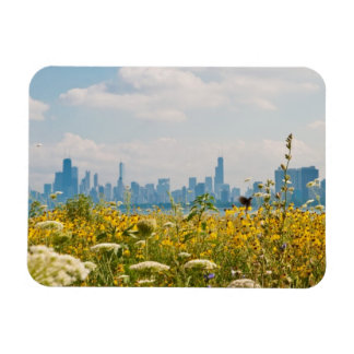Chicago as seen from Montrose Harbor's bird Magnet