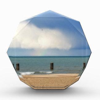 Chicago beach award
