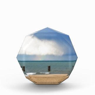 Chicago beach awards